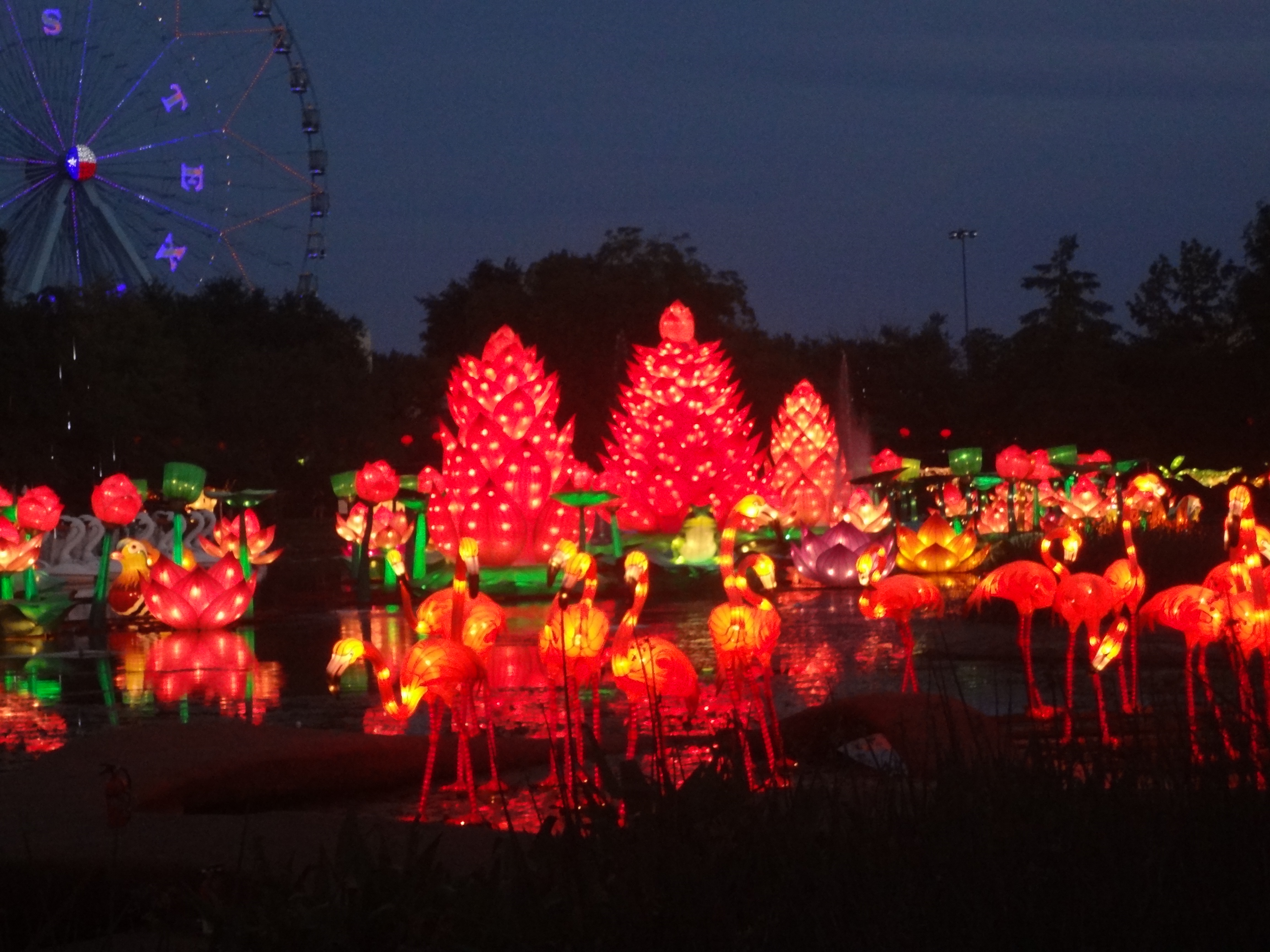 Lantern Festival Adds Cultural Spark To State Fair The Evergreen